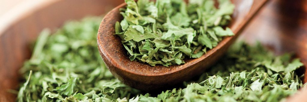 VacQPack USA Commodities Leaves Herbs